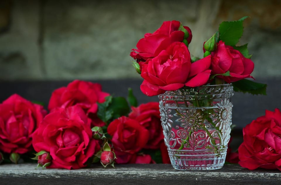 Red roses for wedding