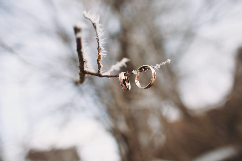 winter wedding rings on snowy tree branch