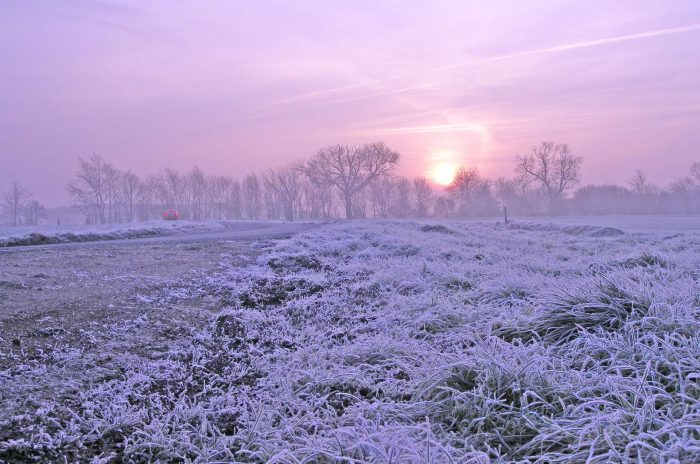 winter sunrise with frost
